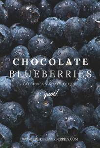 Chocolate Blueberries - a quick healthy indulgent snack