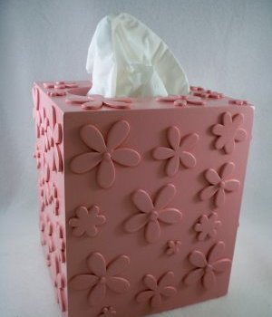 Recycled tissue box
