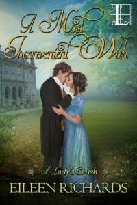 Book Cover: An Inconvenient Wish