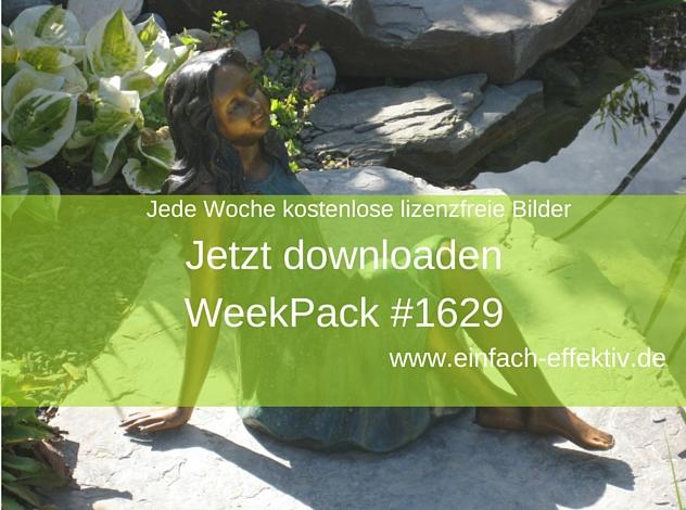 WeekPack-1629 – Kostenlose Fotos