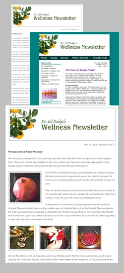 wellness newsletter