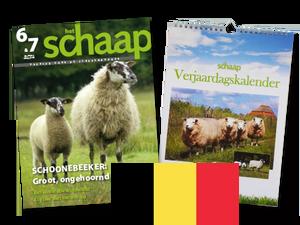 Belgisch abonnement Het Schaap