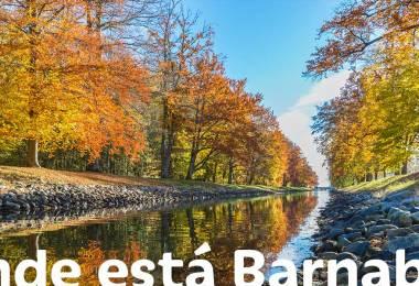 Barnabé: o missionário