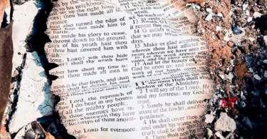 Salmos ficam intactos após incêndio na Califórnia e renova a fé de moradores