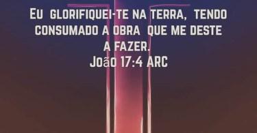 João 17:4