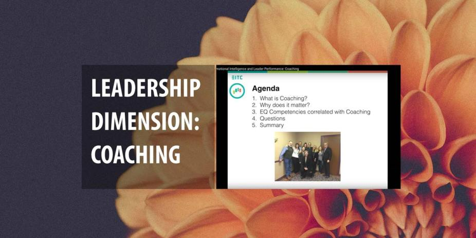 Emotional intelligence and leader performance: coaching
