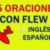 25 Oraciones En Inglés Con Flew | Geniales Oraciones Con Flew