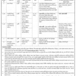 Ministry of Primary and Mass Education Job Circular 2016 Apply Now