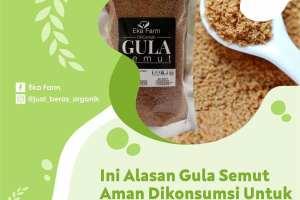 gula semut aman untuk diabetes