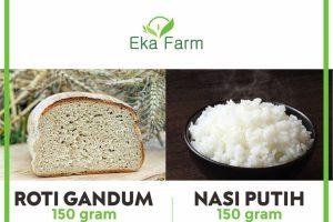 nasi vs roti, pilih yang mana untuk makanan sehat diet menurunkan berat badan