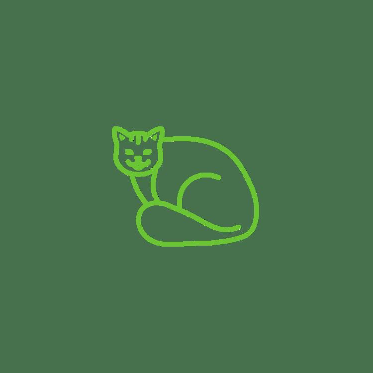 Melembapkan Bulu Kucing