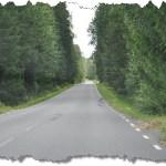 Skogen mot Ödestugu