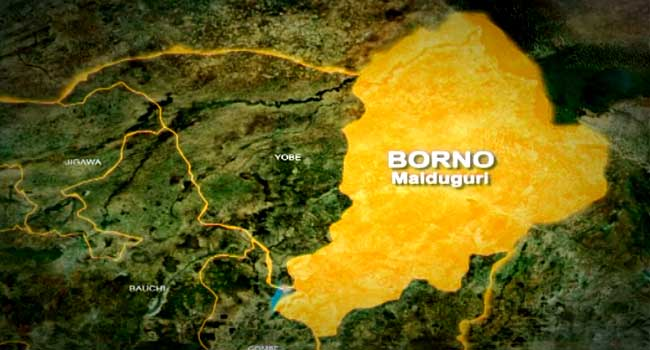 35 Die Of Cholera In Two Days, 156 On Admission In Pulka Community Of Borno