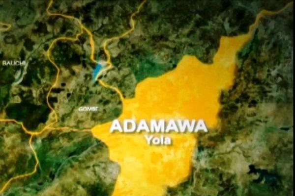 Gunmen Abduct Adamawa Journalist