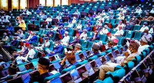 Twitter Ban: Reps Reject Lifting Of Twitter Ban