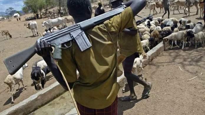 Bauchi Governor Appeals To Herdsmen Not To Carry AK-47, Fulani, Ebonyi