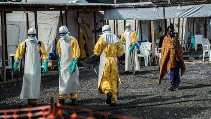 Ebola, Reps