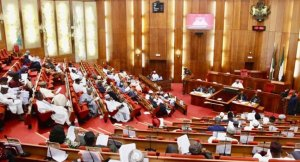 BREAKING: Senate Considers Reducing Age For JAMB Candidates