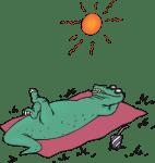 Solskyddskrämer – en liten jämförelse