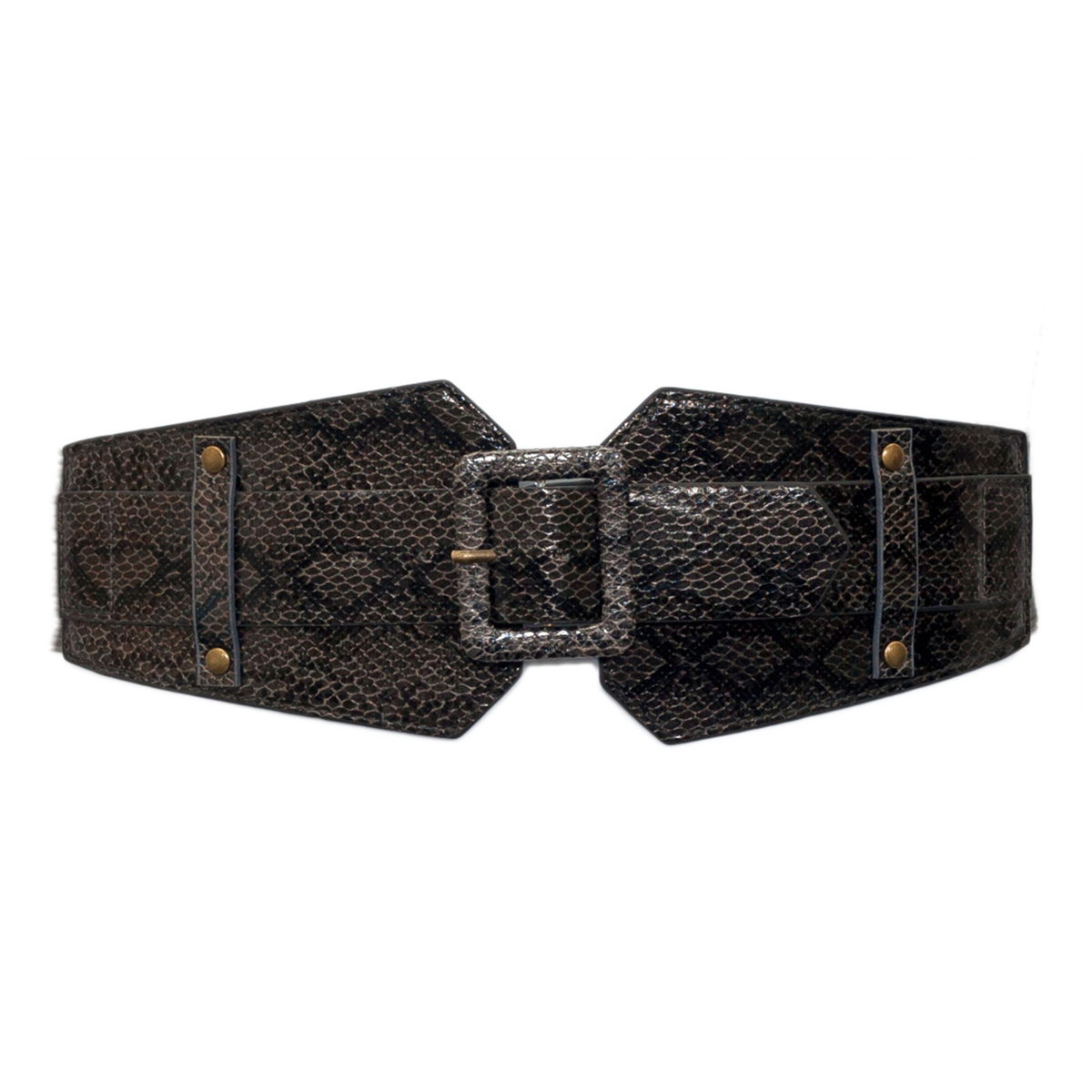 Plus Size Exotic Snake Print Buckle Elastic Belt Gray Photo 1
