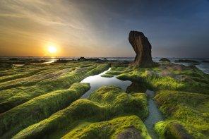 Green bond e sostenibilità di facciata. Opportunità e opportunismo