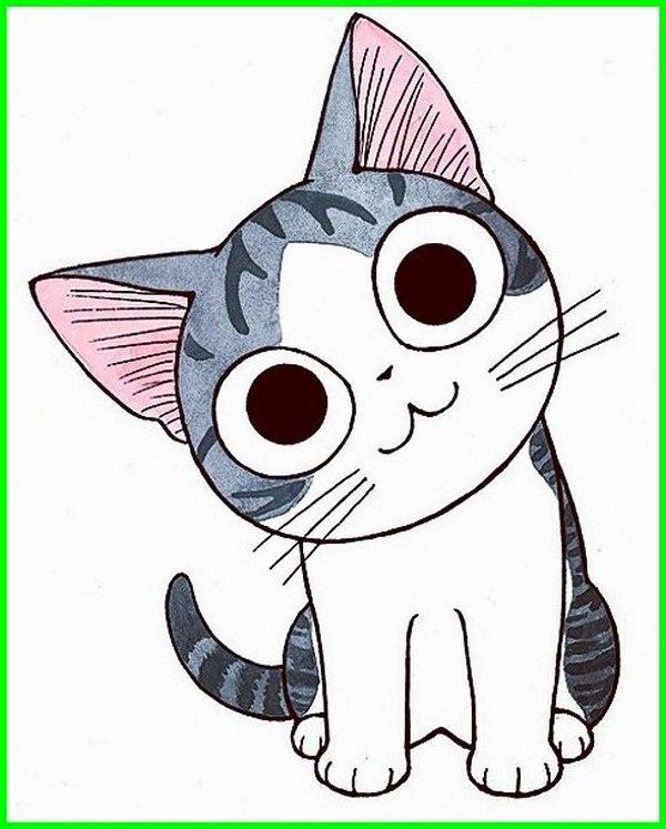 kucing animasi comel