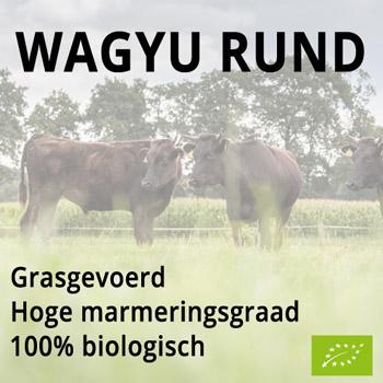 Wagyu rundvlees