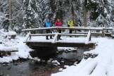 Impressionen aus dem Harz - 13
