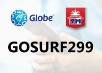 gosurf299