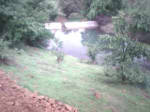 Check dams in appropriate areas can serve community and livestock needs