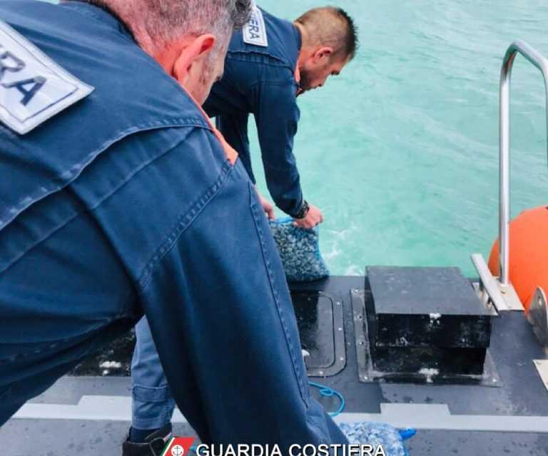 Giulianova, vongole pescate irregolarmente: scattano il sequestro e la multa