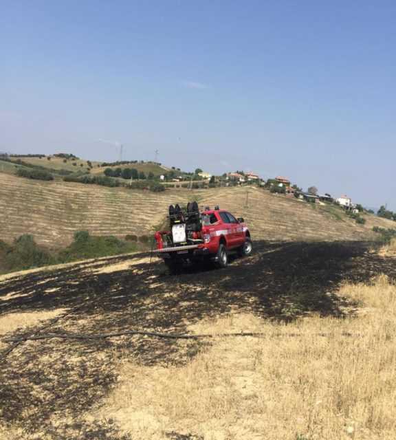 Incendi e caduta alberi: diversi gli interventi dei Vigili del Fuoco