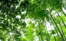 古い地球が終わり、新しい地球が始まる PART.4~2012年は覚醒の境目であり、ギリギリの選択の時~