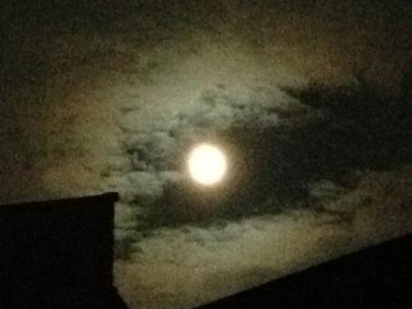 満月と夏の流星群を楽しもう