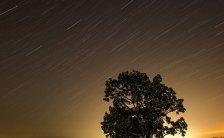 夜空を見上げて四季折々の美しい星空風景を楽しもう~講座「星空浴のすすめ」