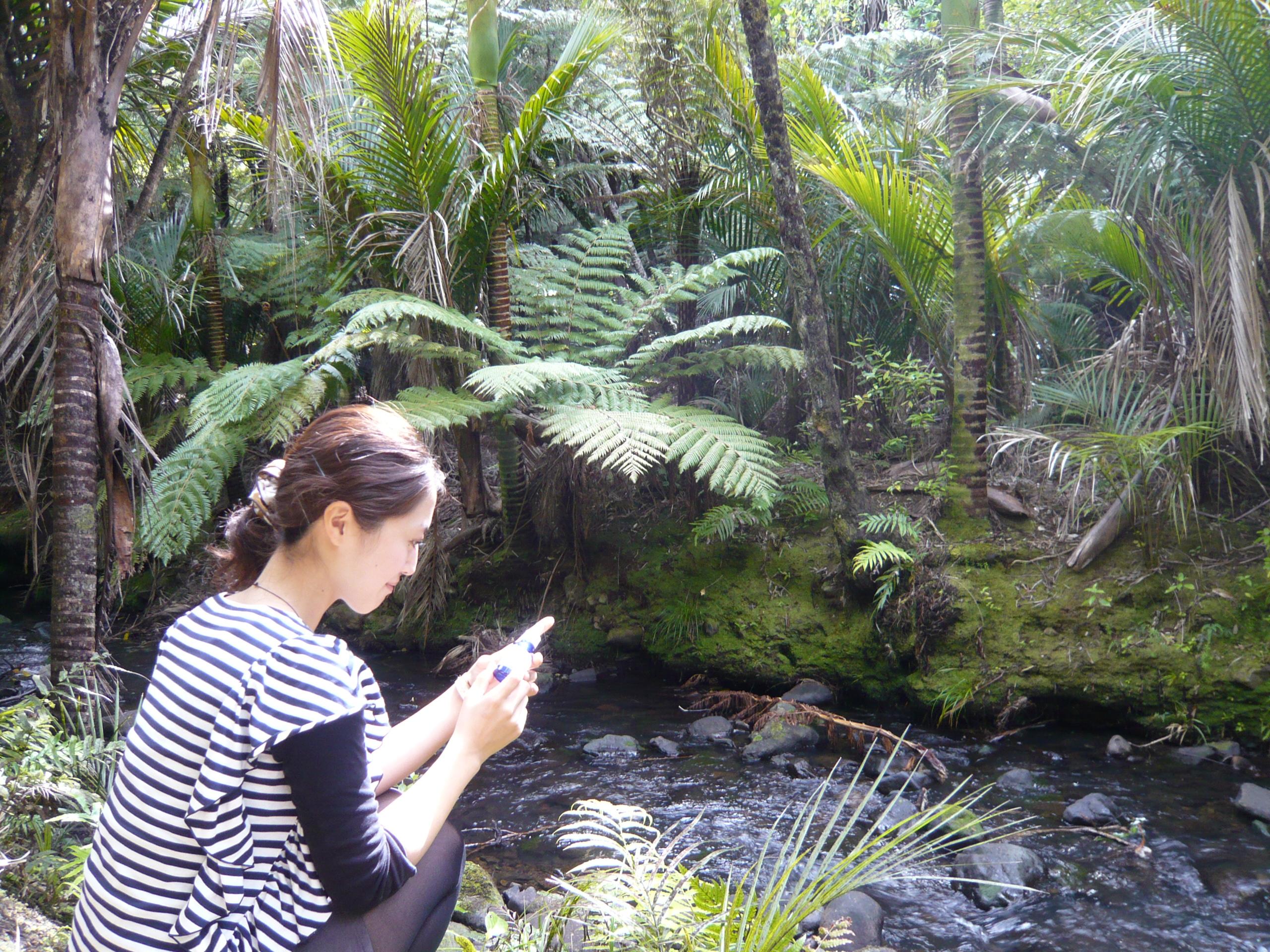 人間を多角的に捉えるニュージーランドのフラワーエッセンス!Vol3   〜ポジティブ視点のフラワーエッセンス〜
