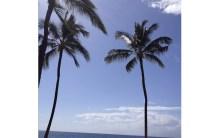 あなたの知らないハワイに出会う!vol.4~マナを増やして幸運を引き寄せよう!③