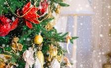 恋愛別☆彡クリスマスの過ごし方をアドバイスいたします!  楽しいクリスマスになりますように❤