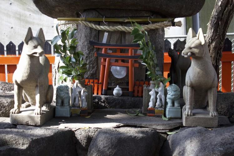 伽座守珊瑚の開運『狼語り狐語り』第9話~先輩眷族が語る、日本古来から伝わる神社・祠の歴史とは?