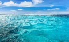 夏の思い出をパワーに! 海の色『ブルー』でモチベーションアップ!