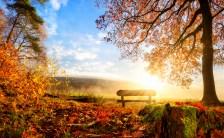 秋分の日を過ぎ、2017年を迎えるために心がけておくべきこととは?〜極限状態でも自分の声を聞く