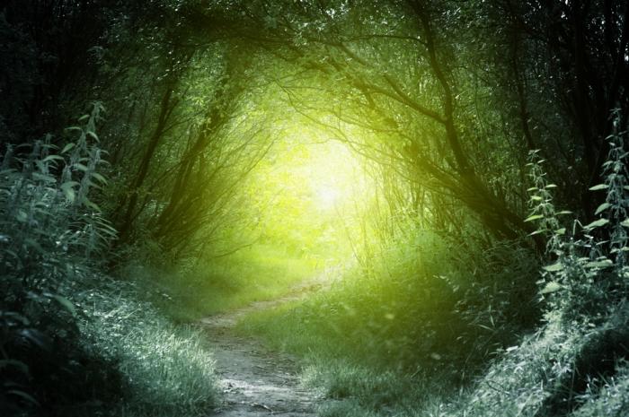 魂の真実 Ⅳ<br>〜「綿毛に包まれて生きていく」〜Vol.33