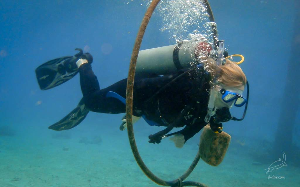 Among all the PADI Adventure dives available, the Peak Performance Buoyancy is one of our favourite.