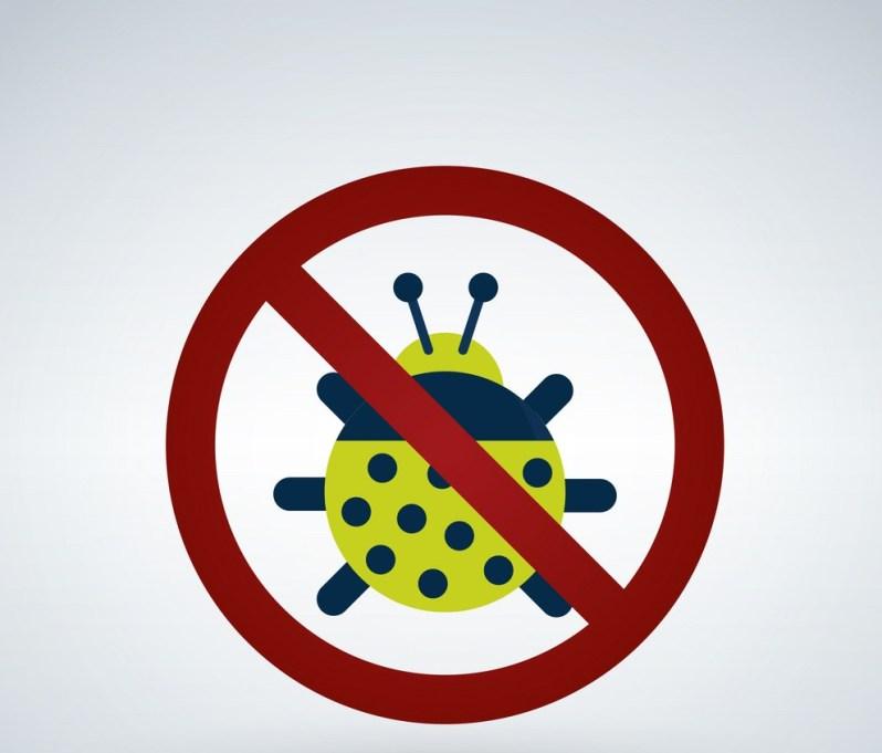 شركة مكافحة حشرات بالطائف