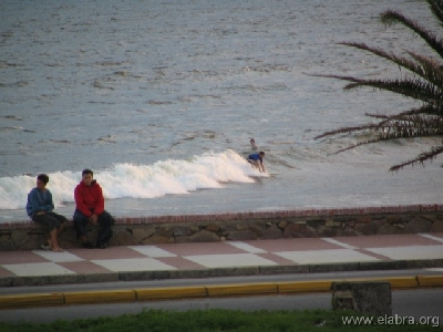 Surfing montevideano