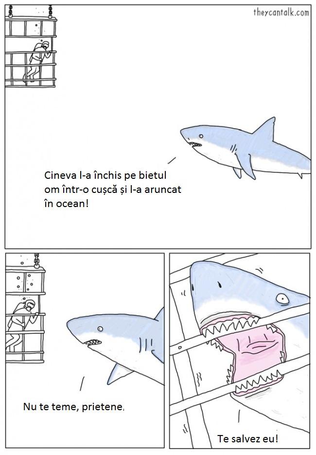 1-rechin