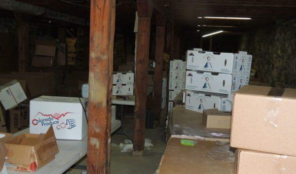shed basement 1114