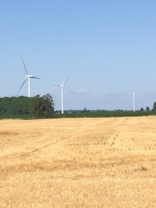 Wind turbines and straw