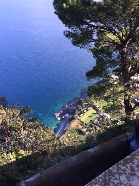 High up on the Isle of Capri we could see the shades in the water.