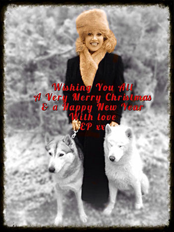 Postcard From Paige December 2013 Blog Elaine Paige